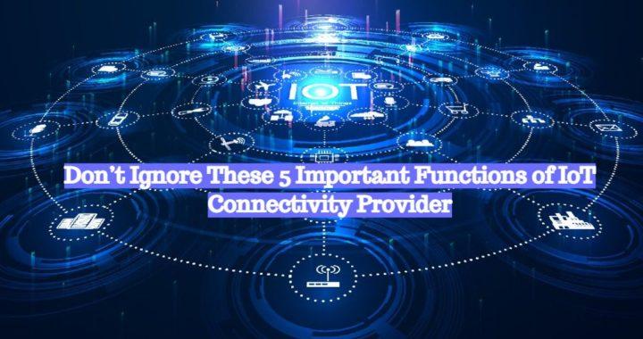 IoT Connectivity Provider (1)